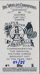Allen & Ginter Mini Flag /25