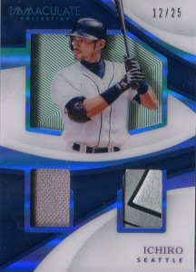 Immaculate Collection Shadow Box Materials /25